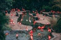 Zoo e Acquari