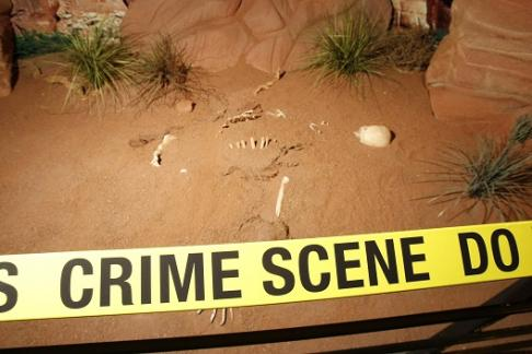CSI: The Experience Las Vegas, Tickets, Discounts & Cheap Tickets