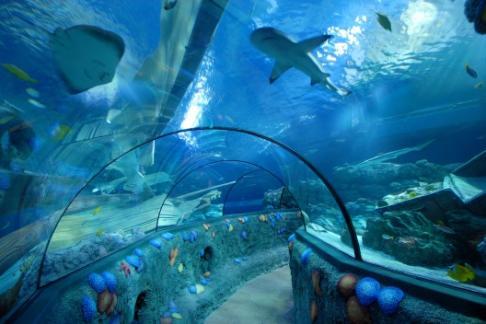 gardaland sea life aquarium offers discounts cheap tickets buy