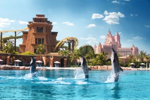 Atlantis Dolphin Adventure Sea Lion Discovery