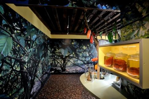 Click to view details and reviews for Chocolate Museum Admission.