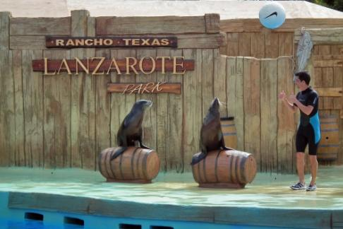 Click to view details and reviews for Rancho Texas Lanzarote Park Country Night.