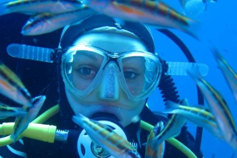 Click to view details and reviews for Discover Scuba Diving Experience.