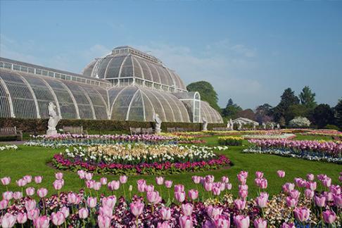 London Kew Gardens Tickets, London Attractions, Discount Tickets | 365  Tickets