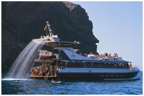 Click to view details and reviews for Royal Delfin 2 Hrs Catamaran Cruise In The Morning.