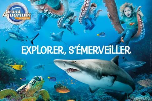 Click to view details and reviews for Grand Aquarium De Saint Malo Standard Ticket.