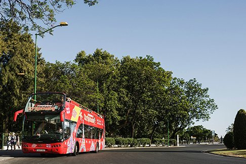 Citysightseeing Seattle 1 Day Hop On Hop Off Bus Tour