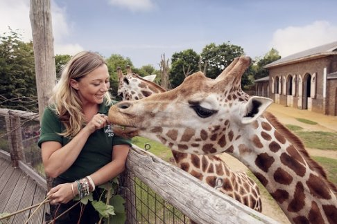 London Zoo Tickets Prices Discounts And Cheap Deals 365tickets