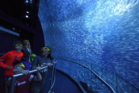 National Geographic Encounter - Ocean Odyssey