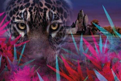 Click to view details and reviews for Parc Zoologique De Paris Fast Track Ticket.