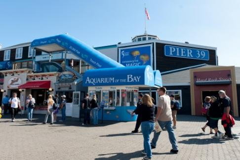 Aquarium of the Bay at PIER 39 is the home to over 20, animals found in and around San Francisco Bay and the California Coast. The 50, square foot aquarium features four main exhibit areas: Discover the Bay introduces guests to eight animal habitats and over a Price: $