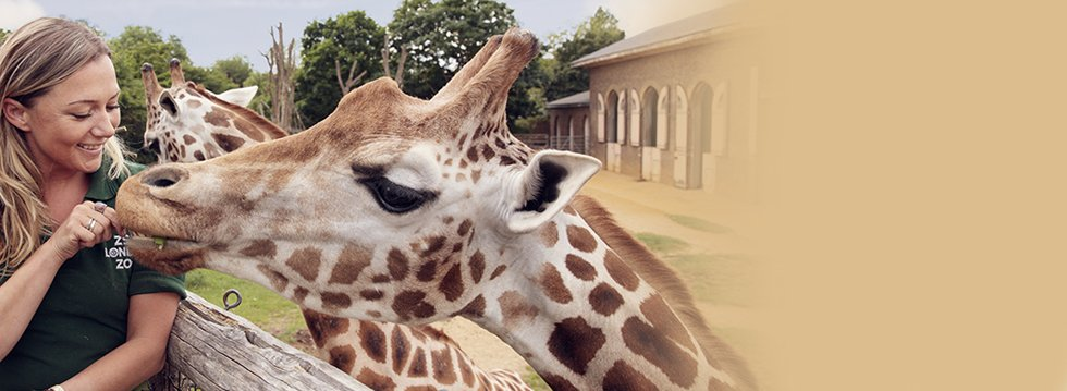 365tickets.co.uk - London Zoo Tickets starting at just £12.29