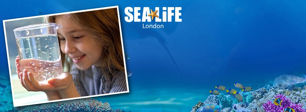 Sea Life London Behind the Scenes Tour