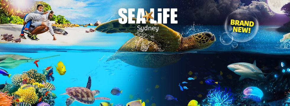 Sydney Sea Life Centre